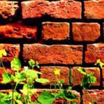 Брандмауэр (firewall)